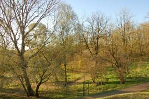 camminata parco degli aironi