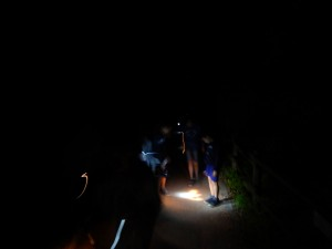 in notturna al parco