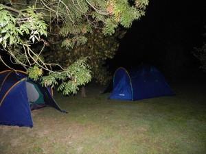 notte al parco degli aironi