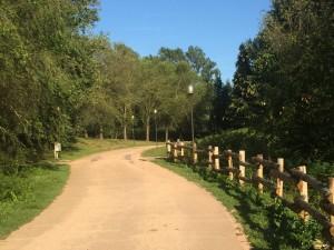 sentiero parco degli aironi
